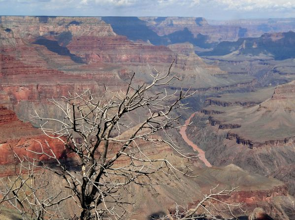 Grand Canyon Mohave Point