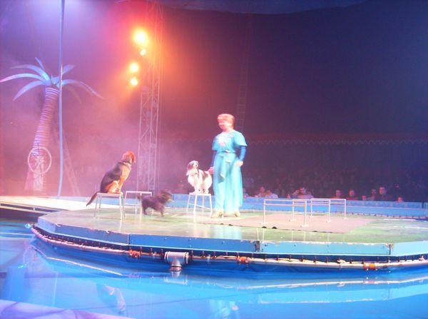 cirque sur l'eau 044