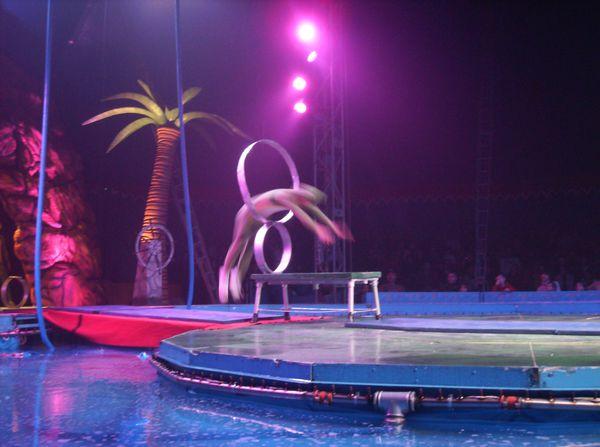 cirque sur l'eau 060