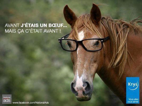 pub-krys-lunettes-boeuf-cheval-lasagne-findus-fail-spangher.jpg