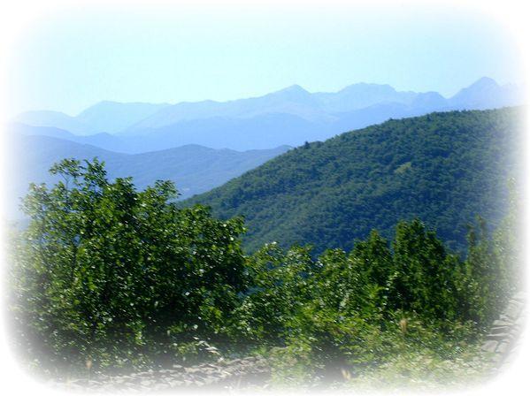 paysage juillet 07