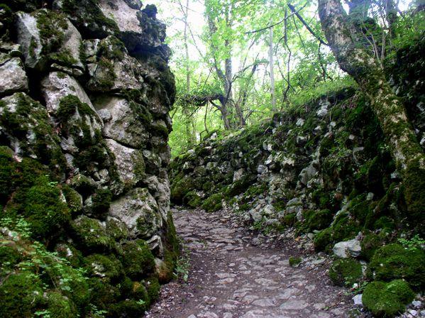 Bramevaque---chemin-qui-mene-au-chateau-4---.jpg