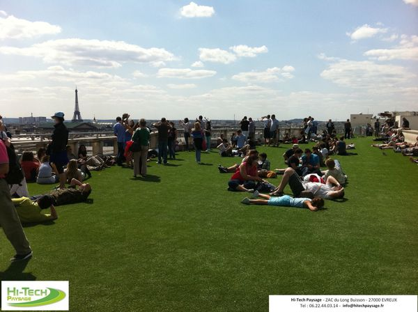 Toit Terrasse Gazon Synthetique Paris Specialiste Gazon