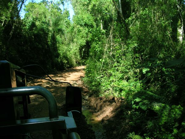 bresil Iguazu Parc Argentin Treck Camion2