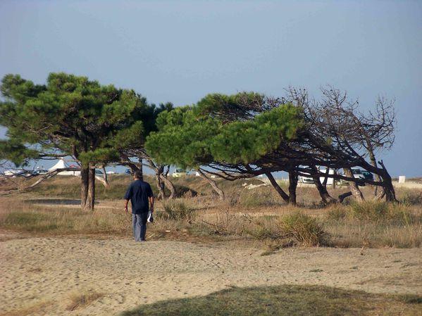 Canet la plage