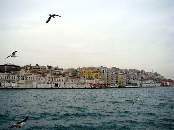 Balade - Bosphore - Istanbul (10)