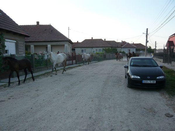 traversée du village © Bernard Moutin 20110012