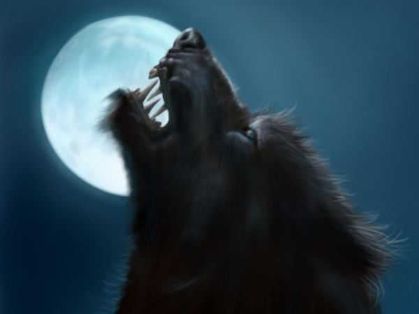 Werewolf_by_jinkies36.jpg