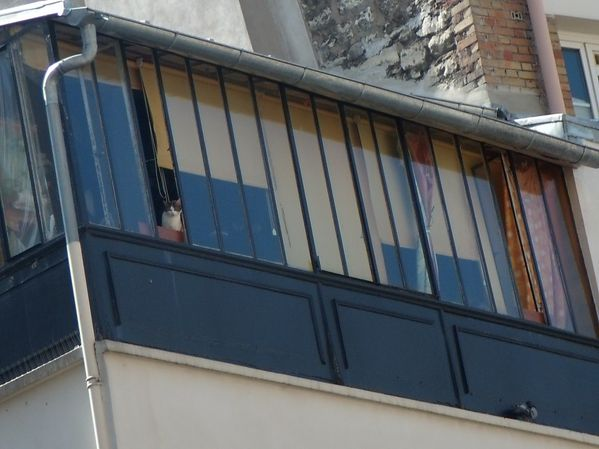 rue-jp-timbaud.JPG