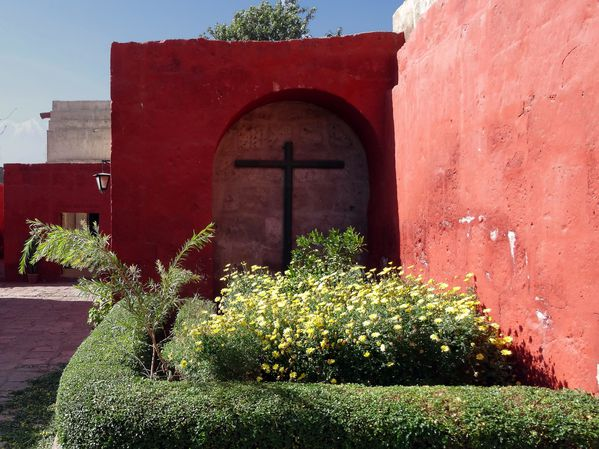 Arequipa-couvent-Santa-Catalina-fleurs.jpg