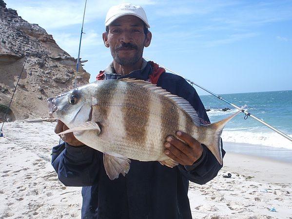 http://img.over-blog.com/600x449/2/46/16/12/Dakhla_2008-078.jpg