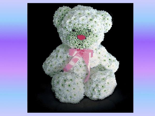Presentation fleurs 1