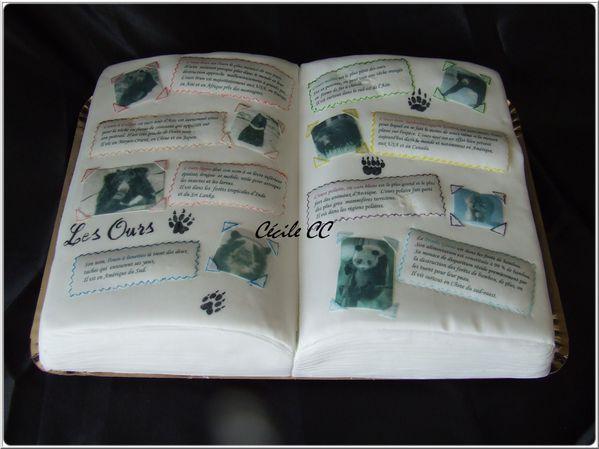 Top Un gâteau en forme de livre sur le thème des ours. - Mes  PH66