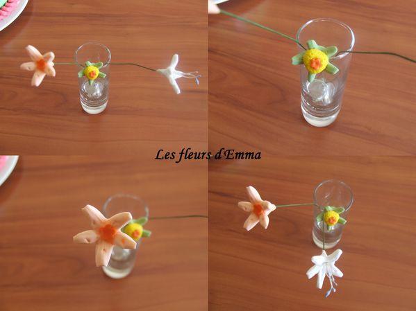fleurs d'Emma 1