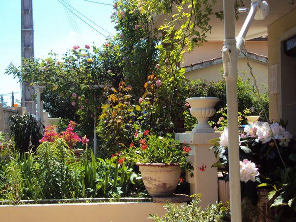 fin-peintures-a-l-escala-et-fleurs-du-jardin-2010-038.JPG