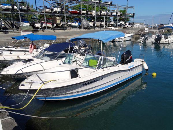 Papeete dauphins bateau