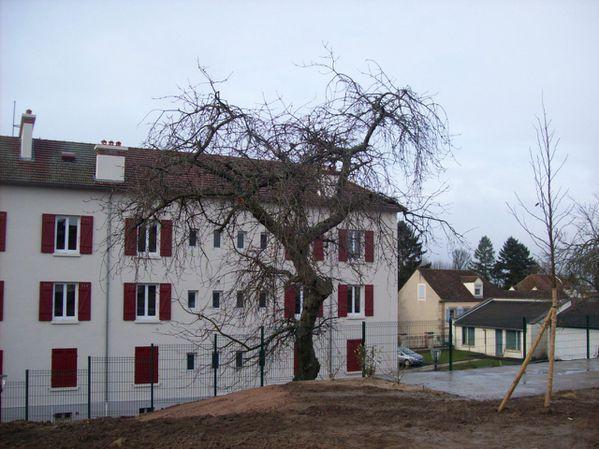 Rue de la jambe de bois - 101 2266 (Copier)