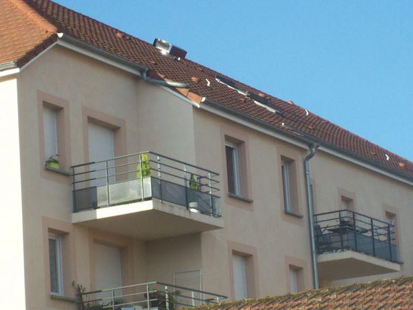 Rue Bernard Renault - 100 8531 (Copier)