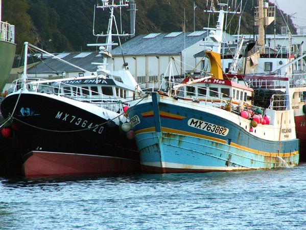 bateaux-peche-Morlaix.jpg