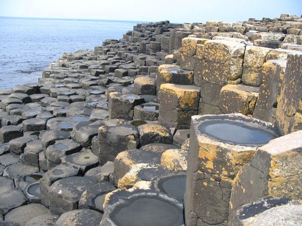 Giants_Causeway_cellules_polygonales.JPG