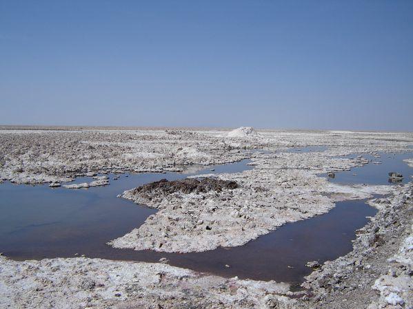 Chaxas---in-Atacama---Andres-gottlieb.JPG