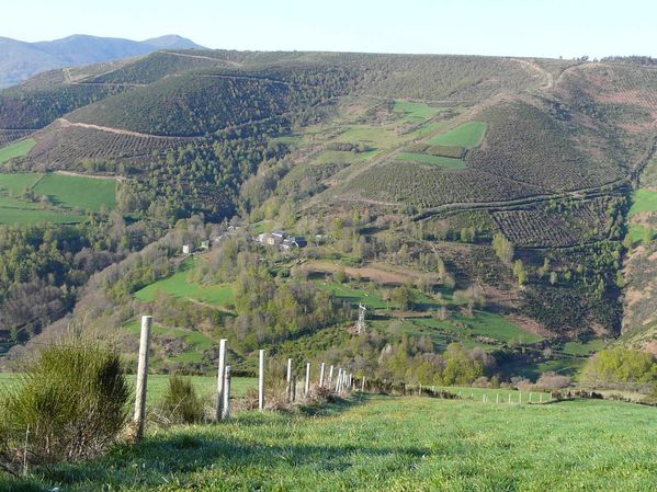 Vega de Valcarce..Tricastella.019