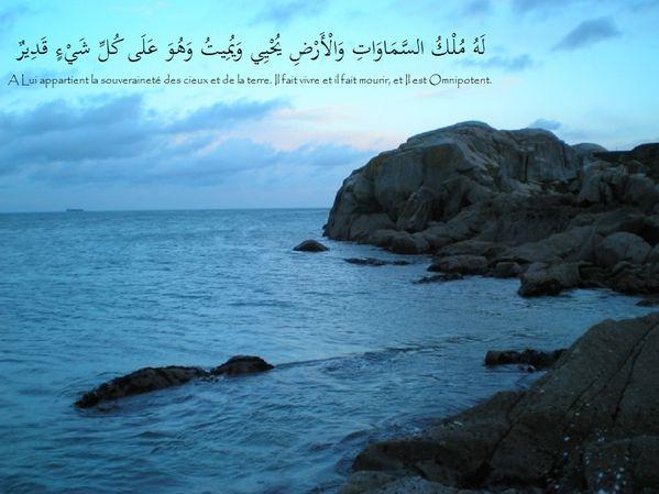 fond islam (64)
