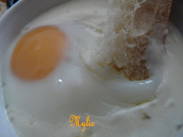 oeuf cocotte aux 3 fromages et coco 2
