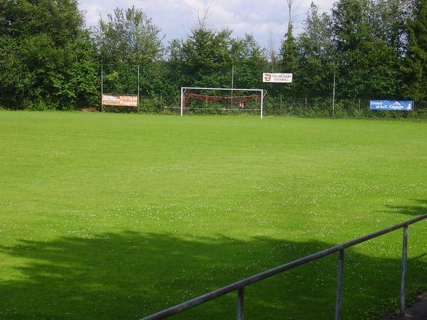 TSV Deizisau (3)