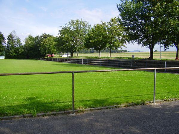 TSV Deizisau