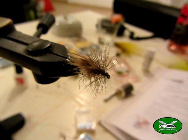truite-et-mouche-brico 2062 web