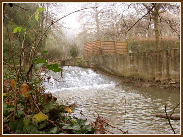 Canal et jardin public.JP (10)