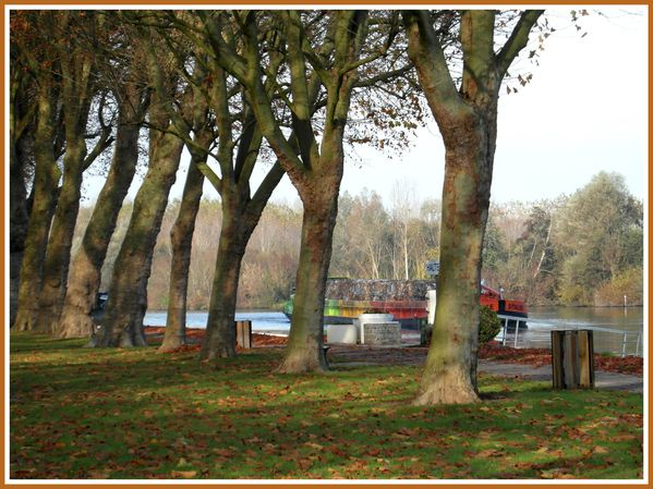 BSS.RD.Automne. (3)