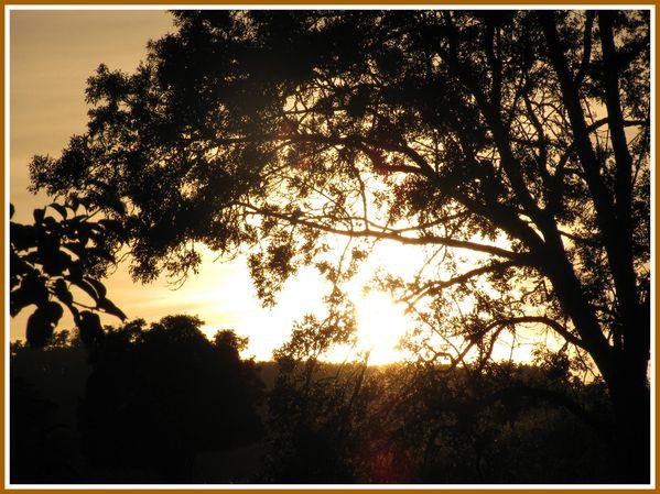 Soleil couchant (1)