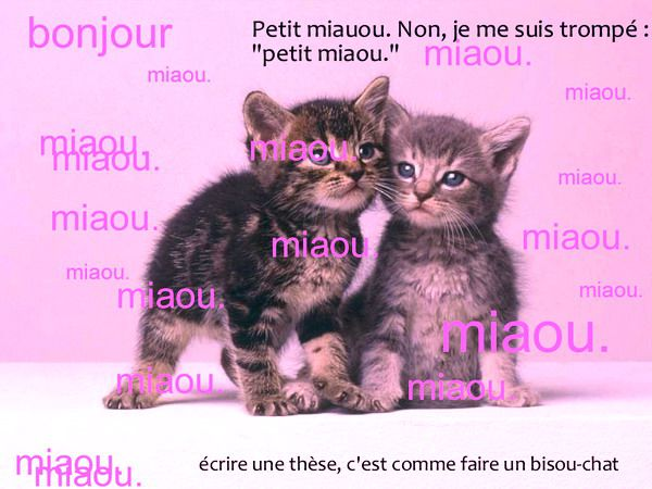 Bisou chat 2