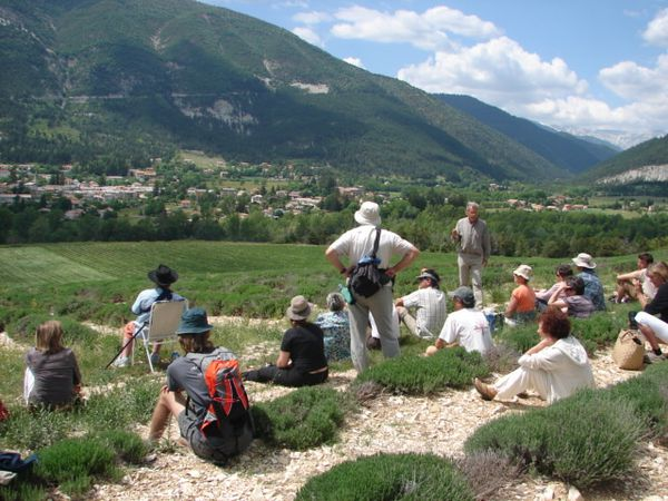 photo-CD-Pays-A3V-lecture-paysage-st-andre-les-alpes-05-06.JPG