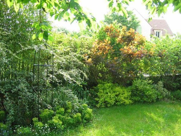 4 saisons dans mon jardin textes et photos sur le jardin au fil des saisons. Black Bedroom Furniture Sets. Home Design Ideas