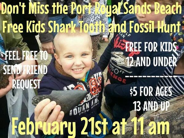 Port Royal fossil hunt 1