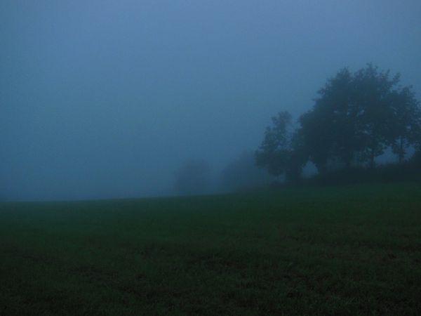 Les Razes Brûlées au petit jour dans la brume - photo 05