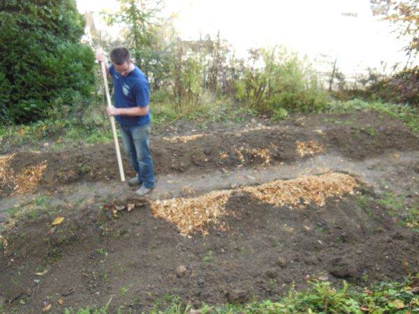 Jardinage chez Dut - 8 novembre 2014 - Photo 06