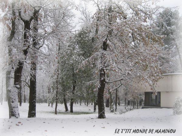 NEIGE NOVEMBRE 2010 BORDEAUX 4