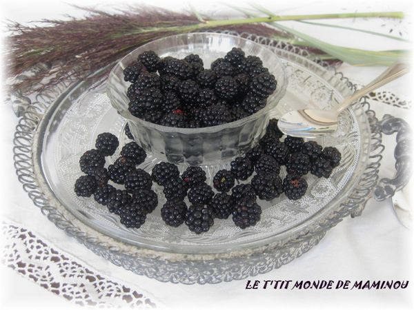 CONFITURE MURES 5