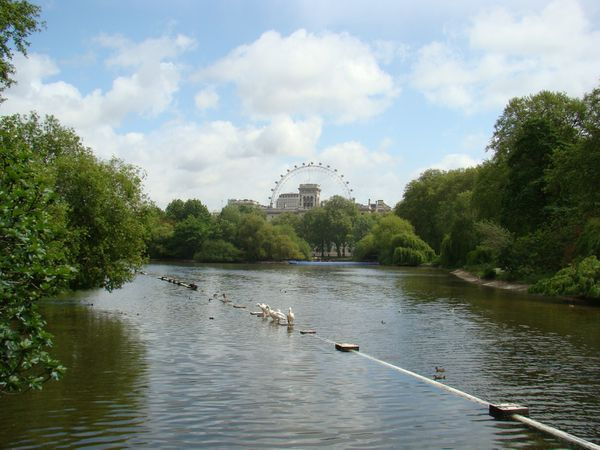St-James-Park---Londres.JPG