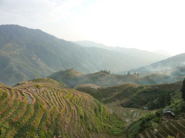 terrasses de Long Ji