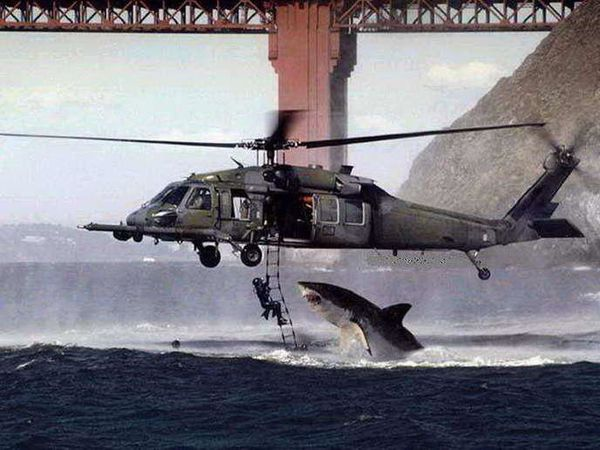 w_helicoptere-requin.jpg