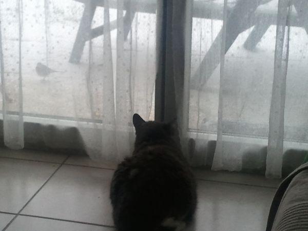 hiver 20120205 171634