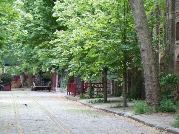 Rue de Thorin 2012-05-18 15-41DSCN2722