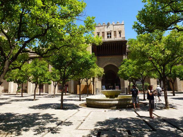 SEVILLA---cathedrale---cour-des-orangers.JPG