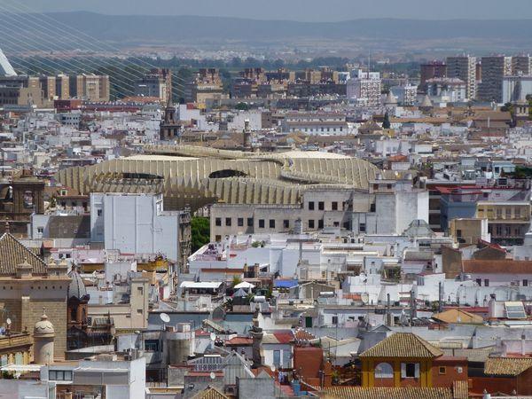 SEVILLA---vue-sur-monument-Plaza-de-la-encarnacion.JPG