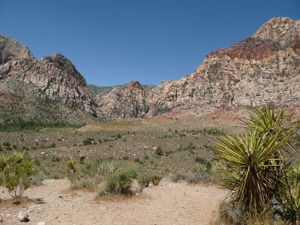 Red Rock Canyon (24)